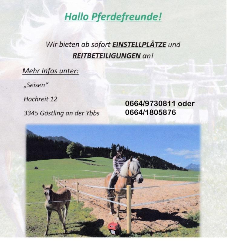 Bauernhof Seisen Hochreit