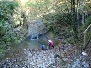 Kogler Wasserfälle